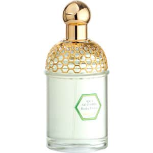 GUERLAIN AQUA ALLEGORIA HERBA FRESCA 